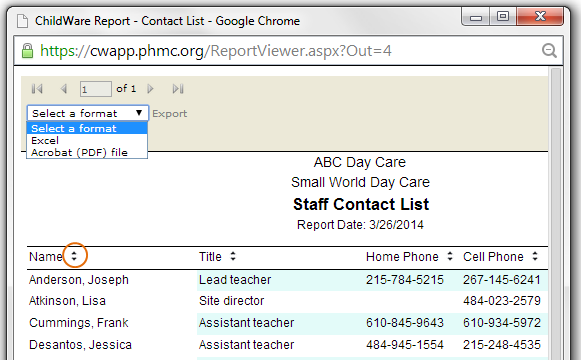 Staff Contact Report in Report Viewer